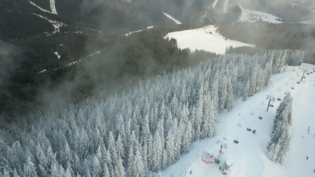 At Arcalis the runs are more likely to cut through trees and offer off-piste skiing opportunities.